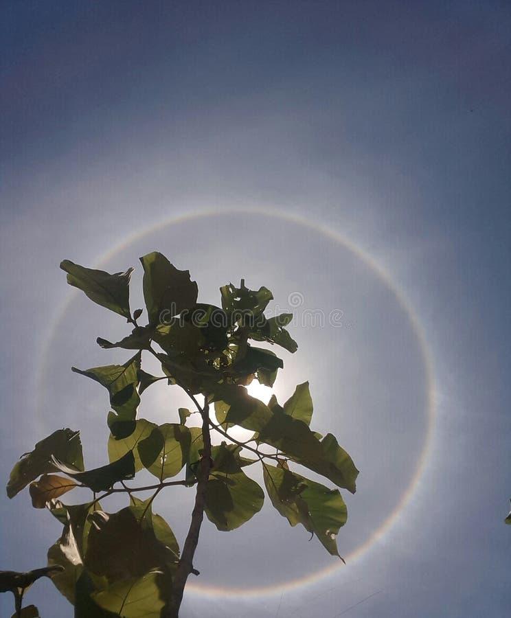 Солнце в радуге стоковые фотографии rf