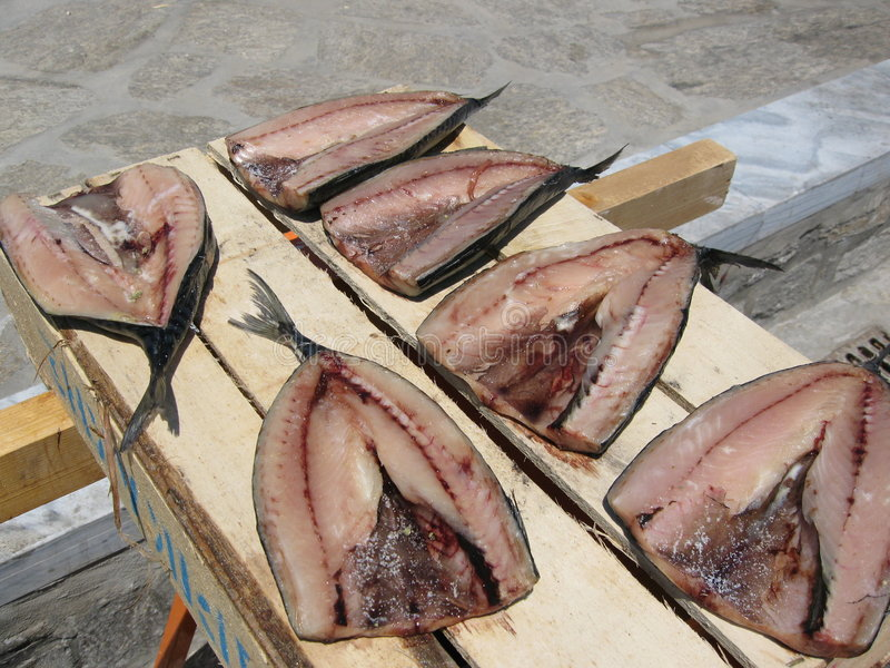 солнце грека рыб засыхания стоковое фото rf
