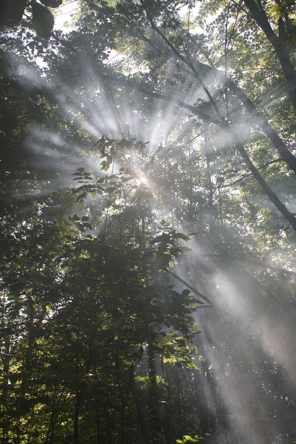 солнце дыма стоковое изображение