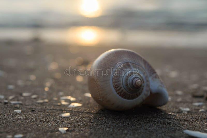 Солнце и море стоковая фотография