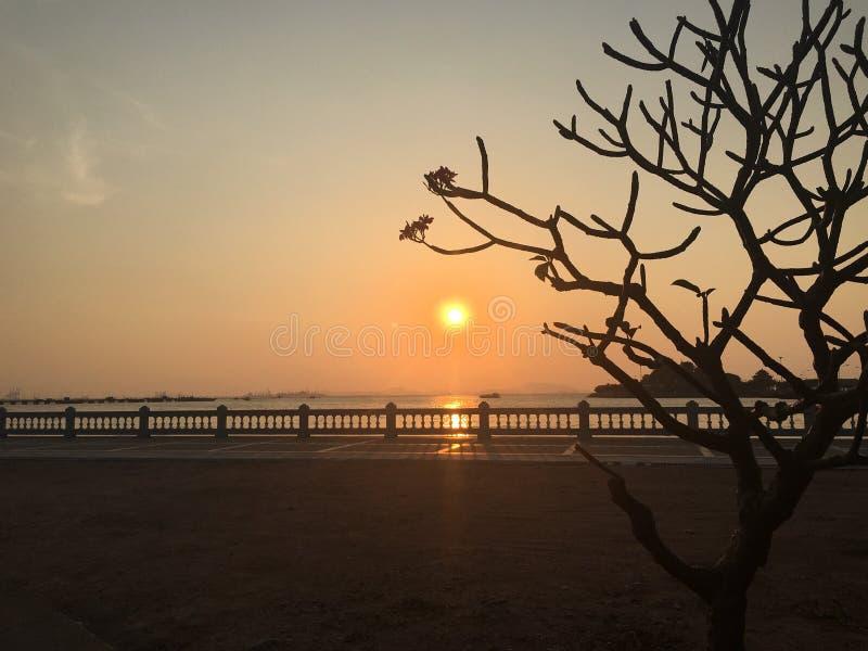 Солнце и силуэт стоковое изображение