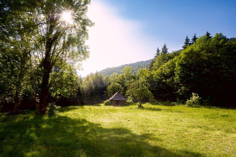Солнце освещает старую деревянную хату на луге горы стоковые фото