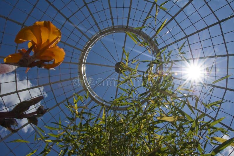 Солнце светя в под открытым небом консерваторию стоковое изображение