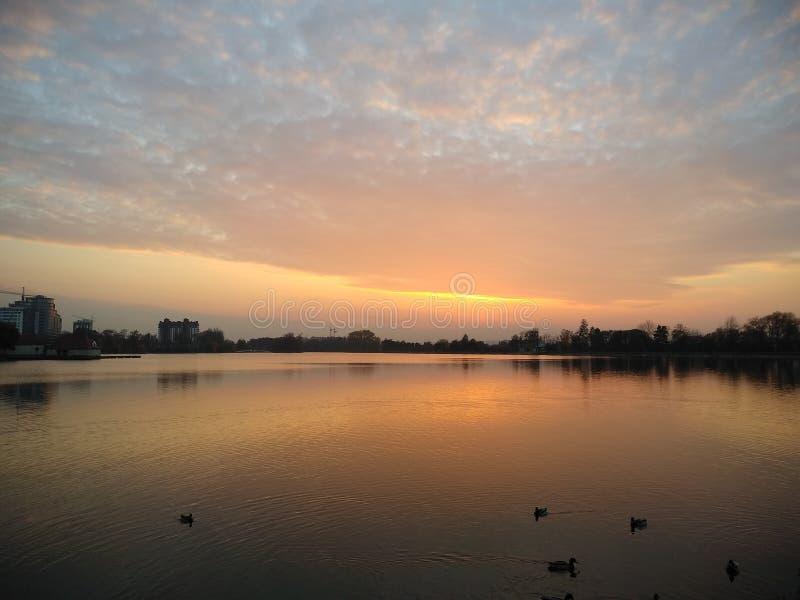 Солнце устанавливает над выравниваясь озером стоковая фотография