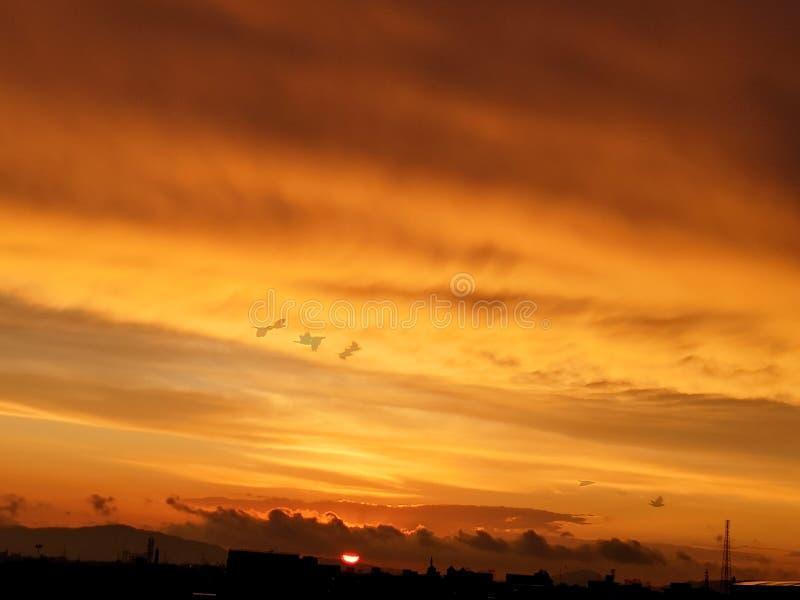 Солнце устанавливая птиц покрашенного взгляда идя назад самонавести стоковые фотографии rf