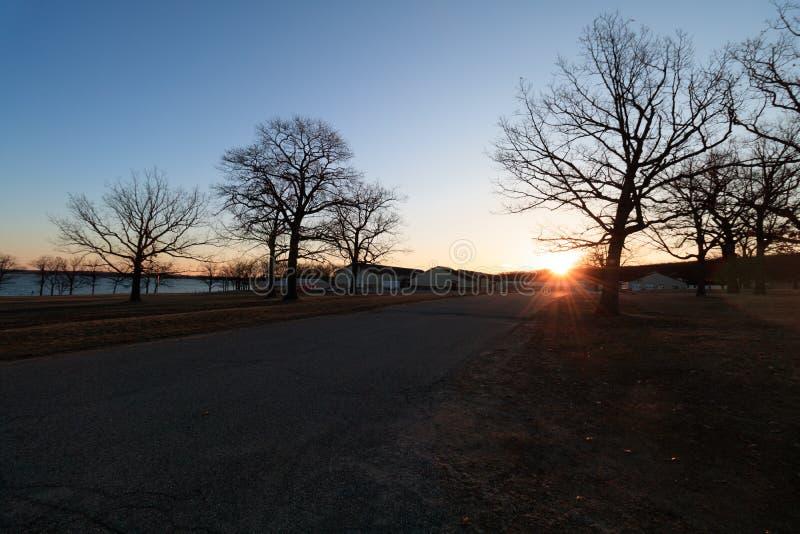 Солнце утра зимы стоковое изображение rf