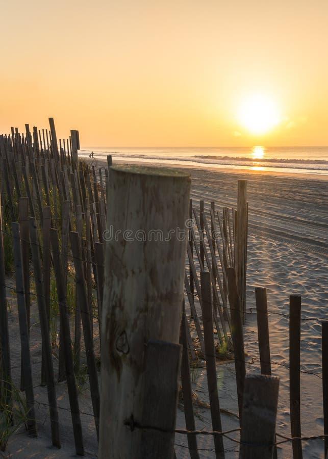 Солнце утра сияющее ярко стоковые изображения