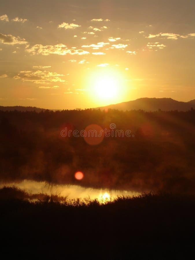 солнце утра стоковое изображение
