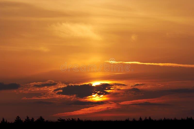 солнце утра стоковая фотография rf