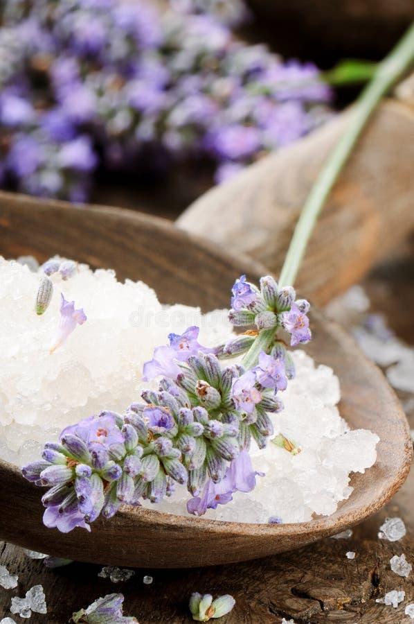 Соль моря и свежая лаванда стоковое фото
