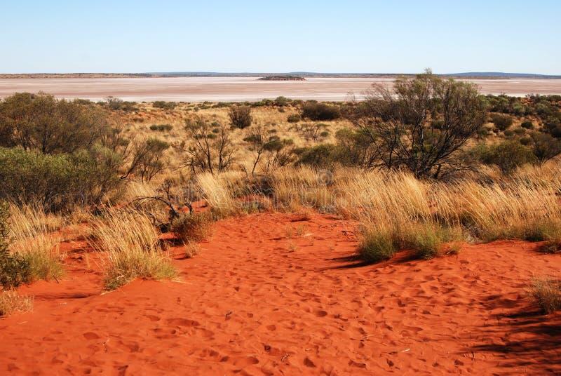 соль озера дюны стоковое изображение rf