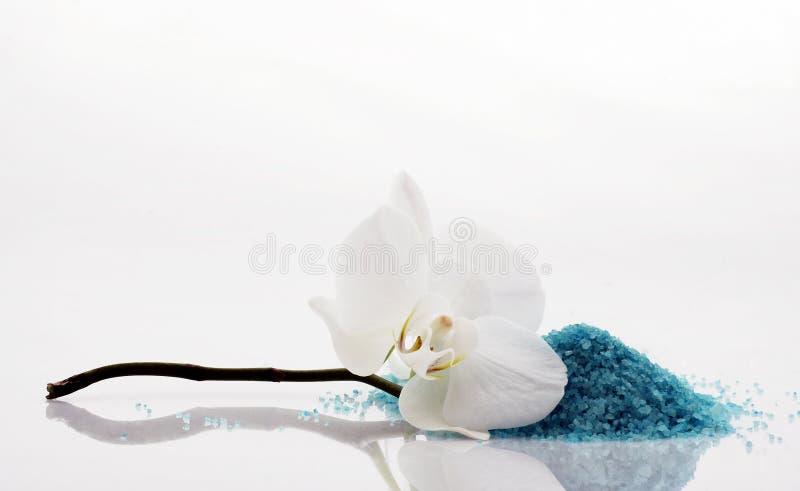соль орхидеи ванны стоковое изображение rf