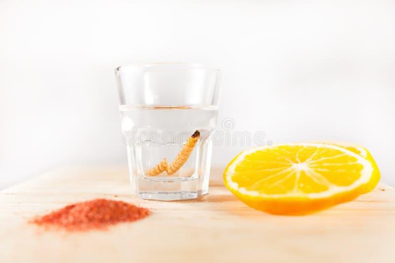 Соль червя питья Mezcal мексиканское с оранжевыми кусками в Мексике стоковые фото