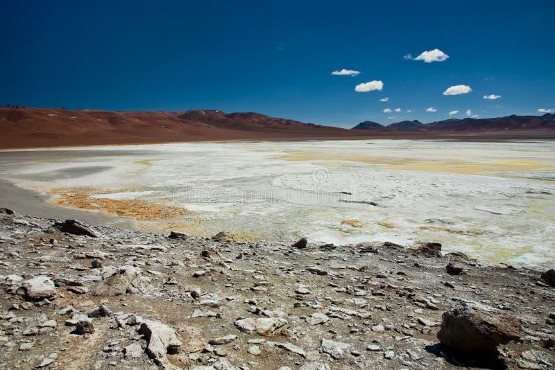 соль salar pujsa Чили de озера стоковое фото rf