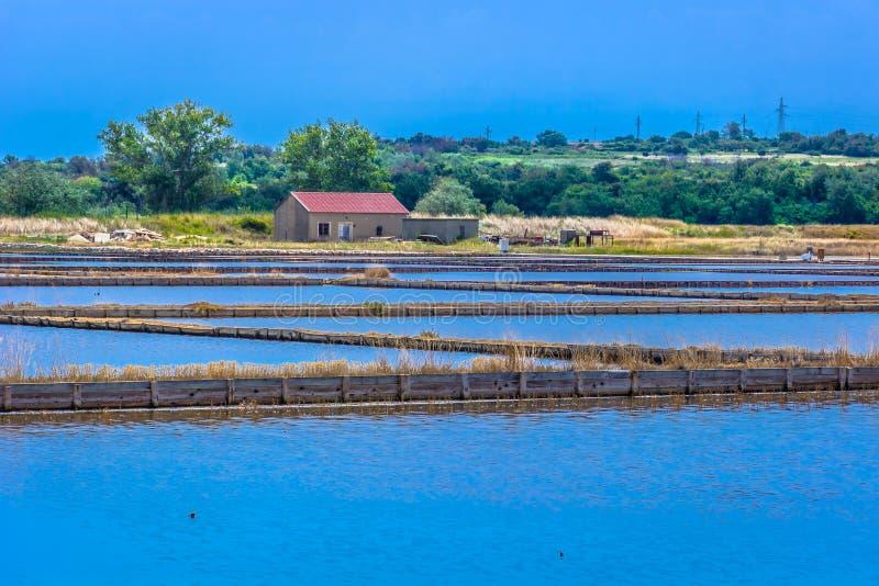 Солёный ландшафт полей в городке Nin, Хорватии стоковая фотография