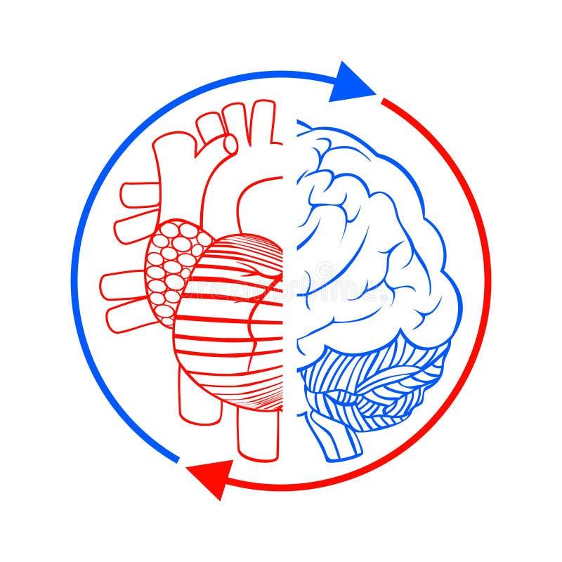 Сообщение мозг и сердце иллюстрация вектора