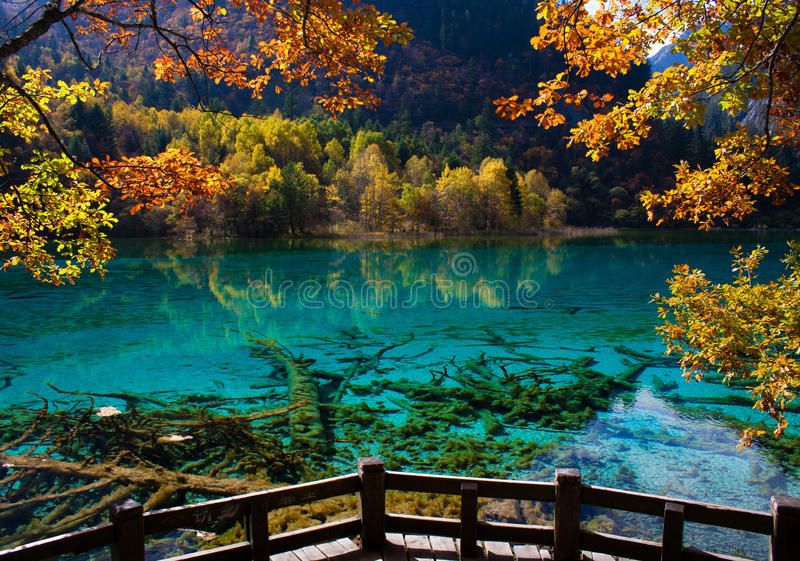 соотечественник jiuzhaigou 11 фарфора отсутствие парка sicuan стоковые фотографии rf