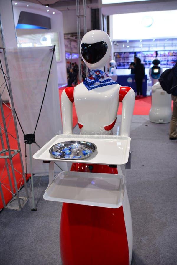 Сопровождающее лицо робота стоковые фото
