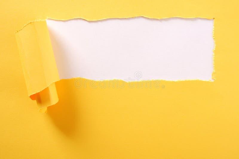 Сорванная желтая предпосылка бумажной прокладки белая сорвала край стоковая фотография