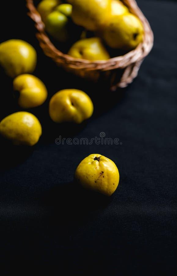 Сорванные желтые плодоовощи Chaenomeles айвы на темной предпосылке стоковое изображение
