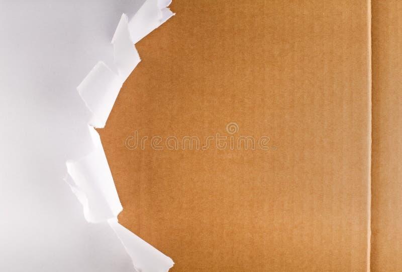 сорванный показывать бумаги картона коробки упаковывая стоковое изображение rf
