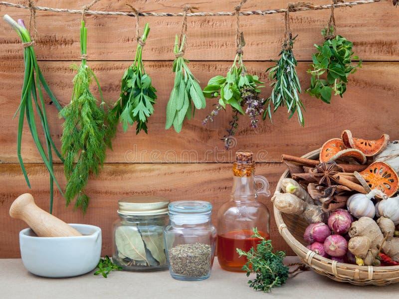 Сортированные вися травы, петрушка, душица, шалфей, розмариновое масло, сладостные bas стоковые изображения