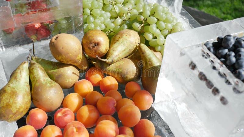 Сортированные плоды ресторанного обслуживании плода на груше вишни голубик виноградин клубник персиков абрикосов льда r стоковые фото