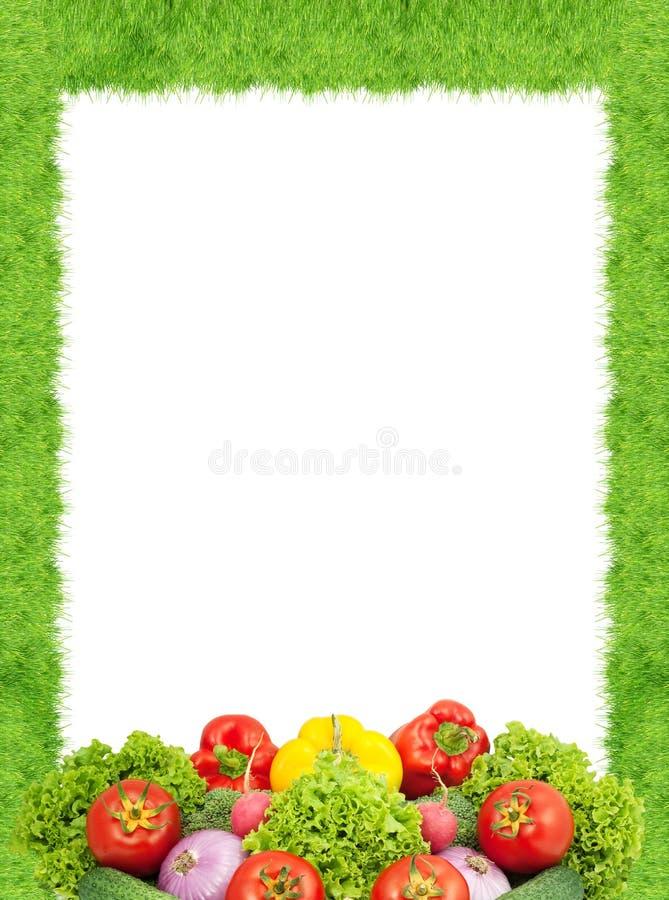 сортированные свежие овощи стоковое фото