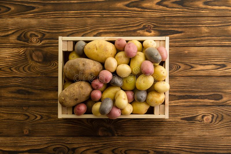 Сортированные сорты растения свежих очищенных картошек стоковое изображение