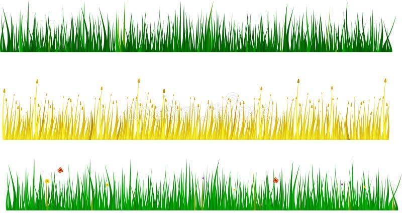 сортированные травы стоковое фото rf