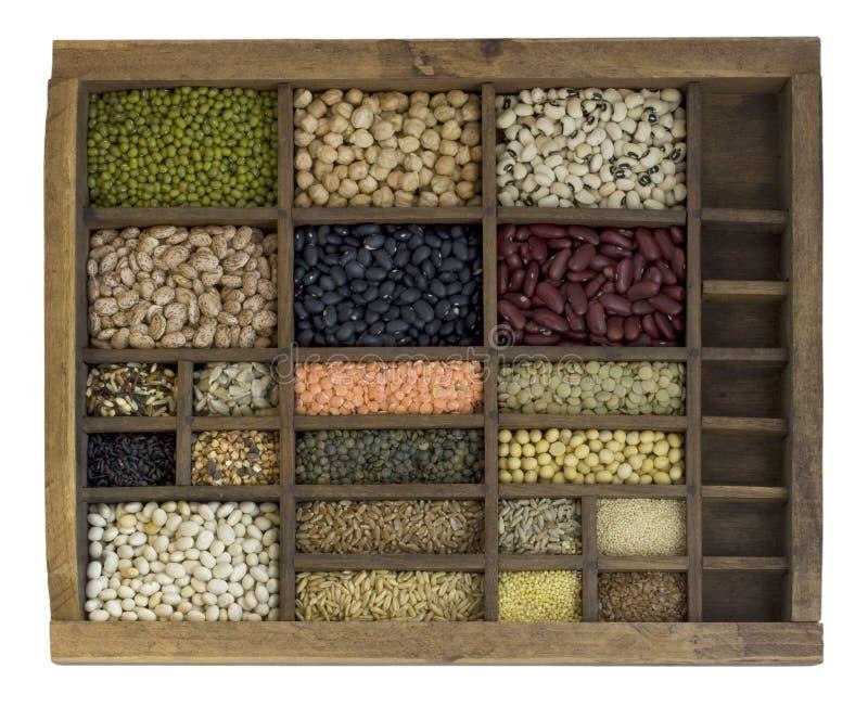 сортированные фасоли покрывают typesetter семян зерен стоковые фото