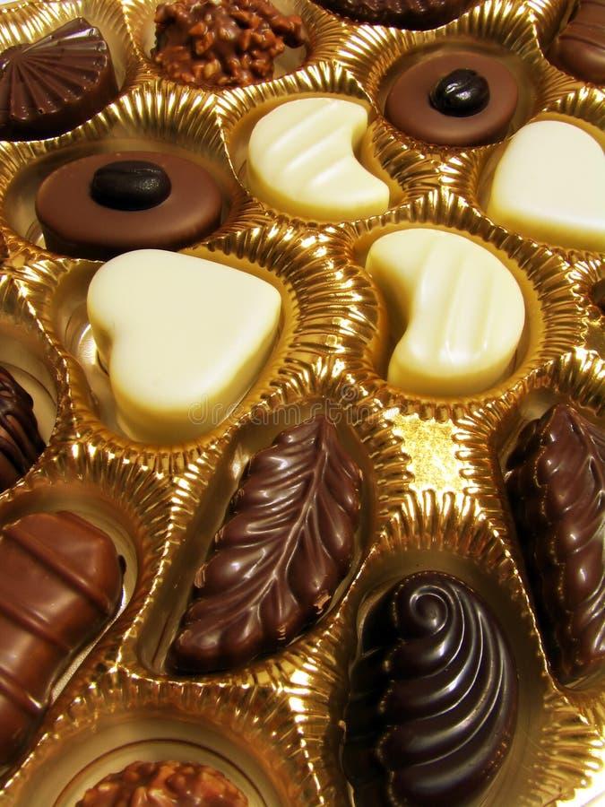 сортированные шоколады стоковая фотография rf