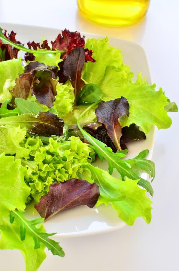 сортированный салат стоковое изображение rf