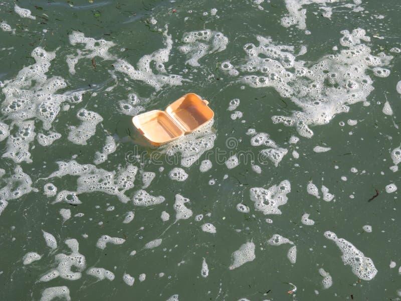 Сор в море 1 стоковая фотография