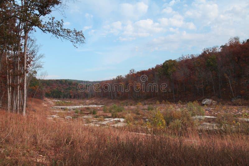 Соскобленный парк штата Закрывать-ins lin Джонсона земли стоковое фото