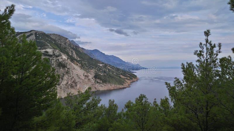 Сосна, море, гора стоковые изображения rf