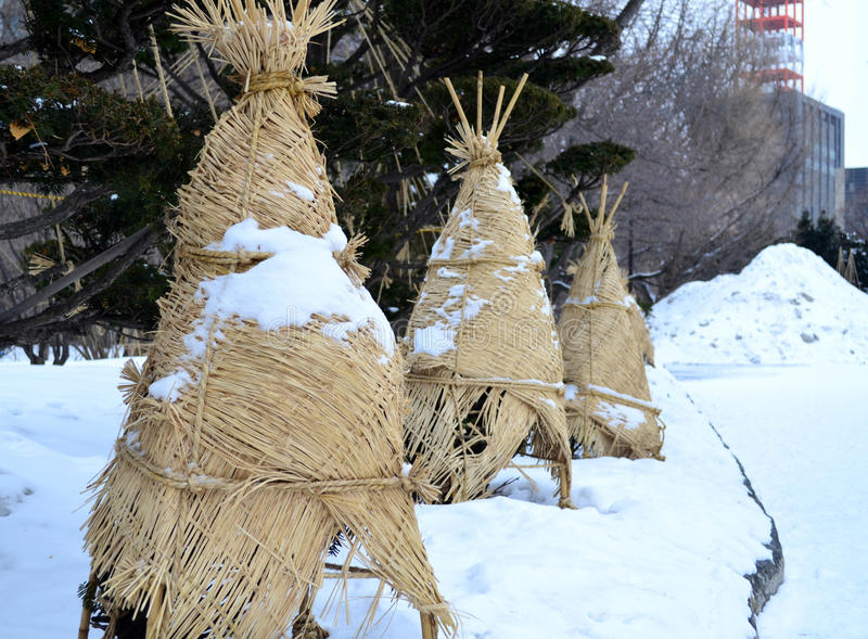 Сосна обернутая с циновкой и веревочкой weave для предохранения от снега стоковая фотография rf