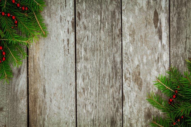 Сосна с красной гирляндой на старой деревянной предпосылке стоковые фото