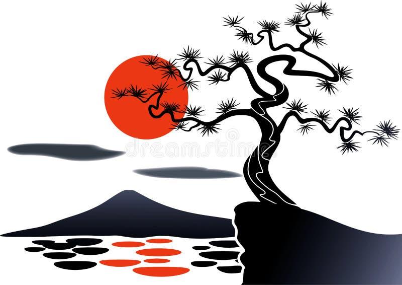 Сосна Япония дерева иллюстрация штока