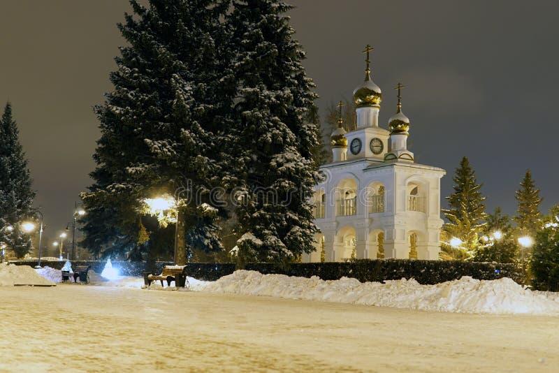 Сосны рождества в зиме в городе ночи стоковое изображение