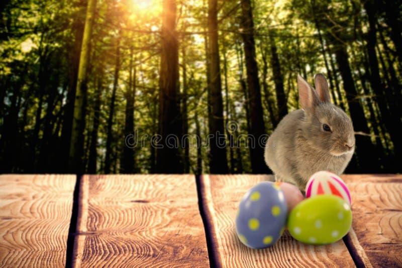 Составное изображение коричневых зайчика и пасхальных яя иллюстрация штока