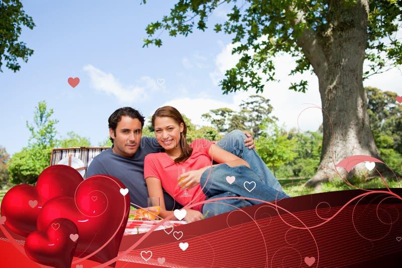 Составное изображение 2 друзей смотря вперед пока они держат стекла по мере того как они имеют пикник бесплатная иллюстрация