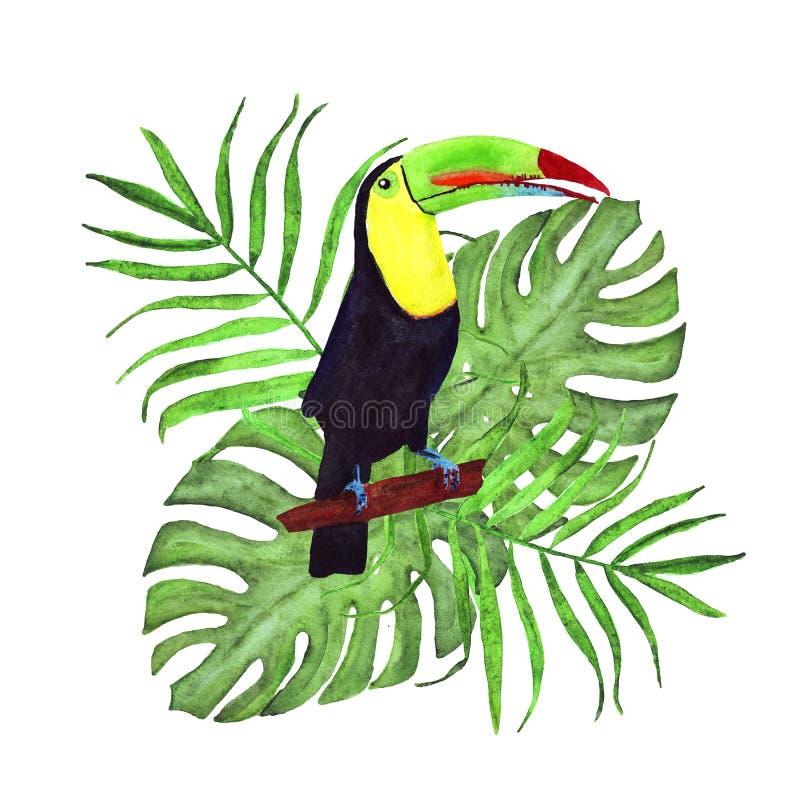 Состав акварели тропический с листьями ладони и monstera и toucan иллюстрация штока