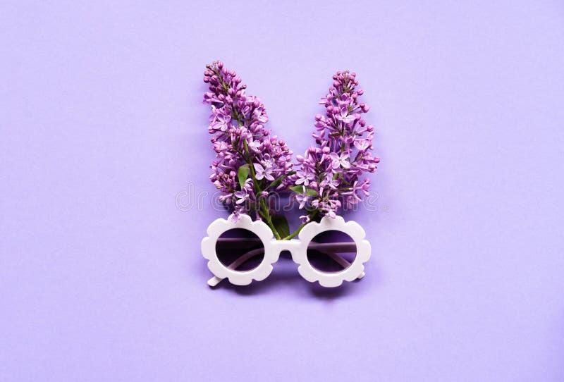 Состав белых современных солнечных очков с цветками сирени на пурпурной предпосылке стоковое фото