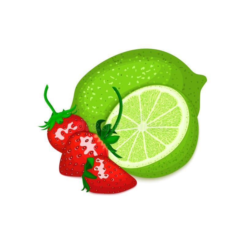 Состав вектора плодоовощ и клубники известки цитруса Зеленый лимон весь и отрезок с ягодами Группа в составе вкусное зрелое иллюстрация вектора