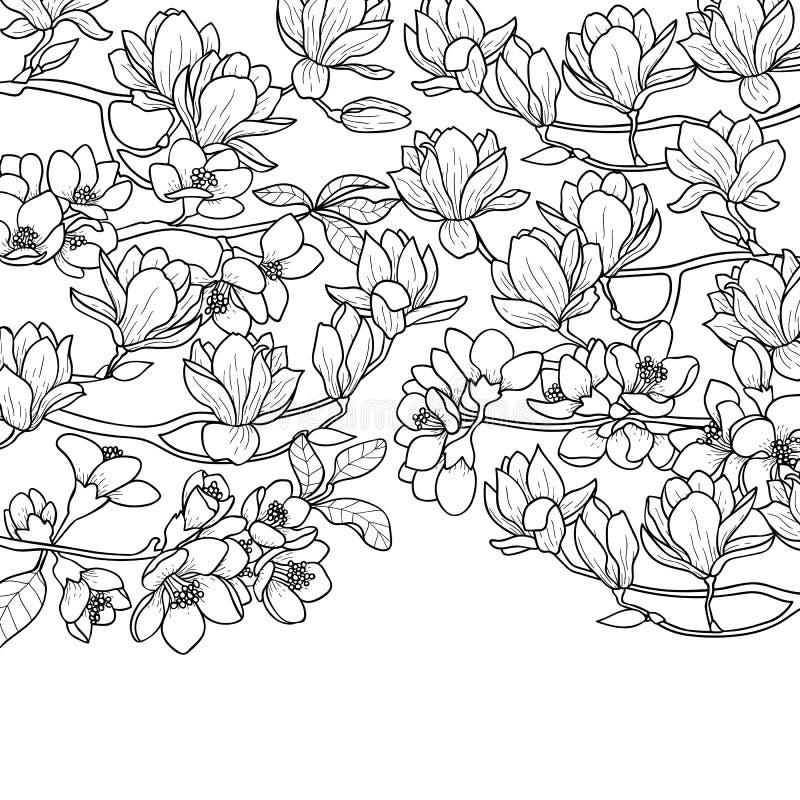 Состав весны магнолии и вишни иллюстрация вектора