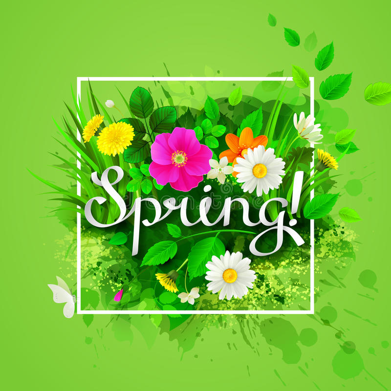Состав весны с цветя стоцветами, желтыми одуванчиками, одичалыми розовыми и зелеными листьями бесплатная иллюстрация