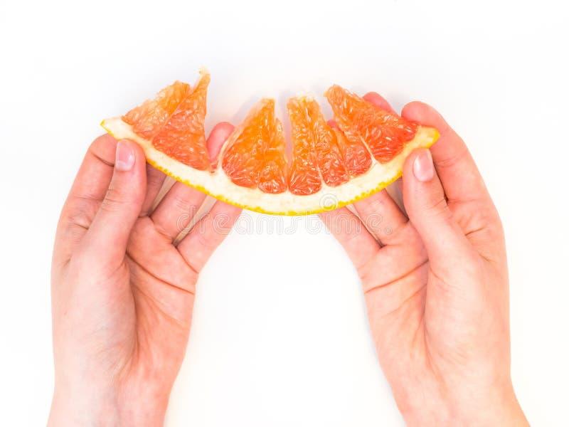 Состав изолированный над белой предпосылкой, взгляд сверху грейпфрута Erved свежий стоковые изображения rf
