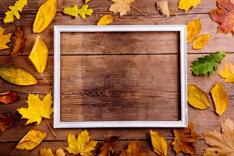 Состав лист осени с картинной рамкой скопируйте космос стоковая фотография