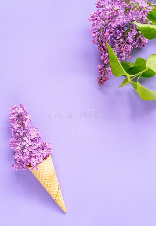 Состав конуса мороженого с пурпурными цветками сирени на фиолетовой предпосылке стоковые изображения rf